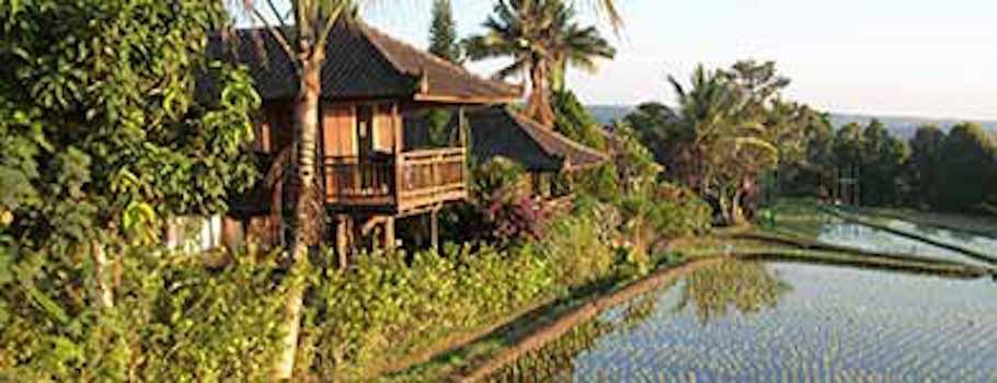 Indonesia alucinante: Bali completa, Borneo y Java