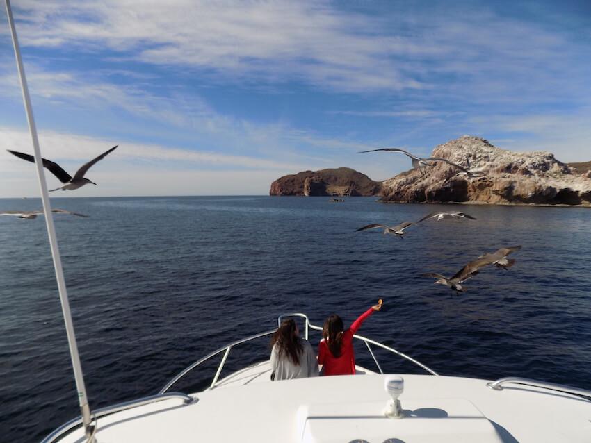 Recorrido por Sonora y el Mar de Cortés (México)