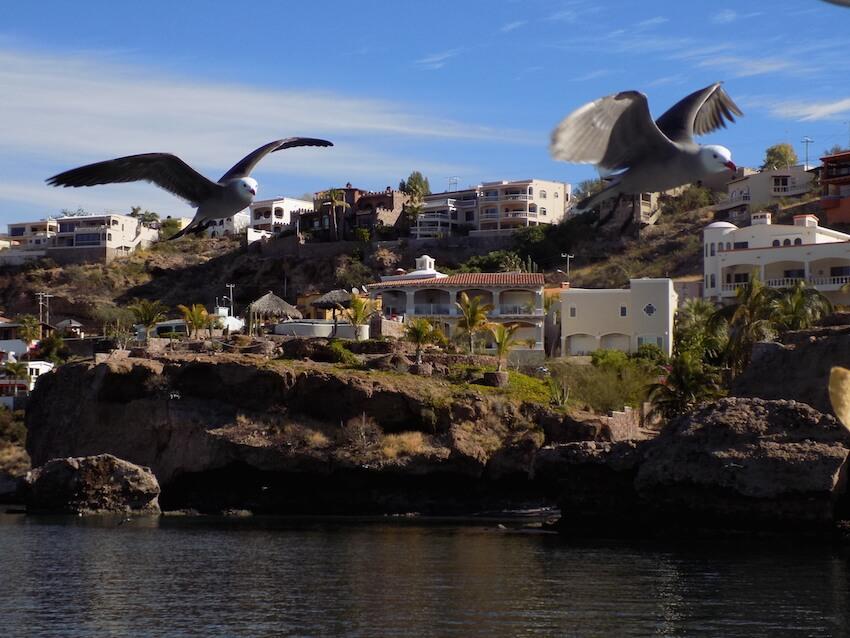 Escapada de cuatro días para recorrer Guaymas
