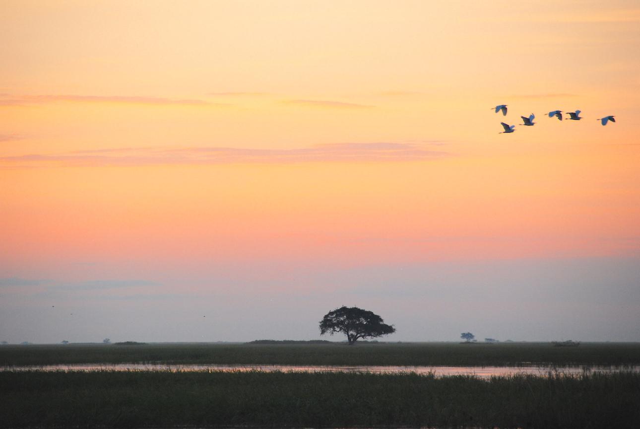 ¿Necesitas visado para viajar a Botswana?
