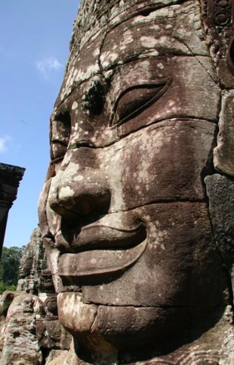 Visita a Camboya y adéntrate en la jungla