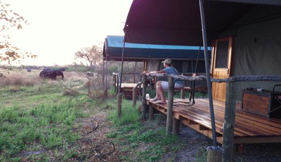 Un safari popular: 8 días con todo incluido en Botswana