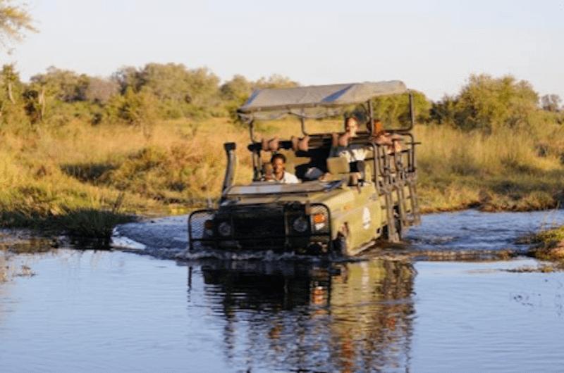 ¡Naturaleza pura! Safari móvil con acampadas en Botswana