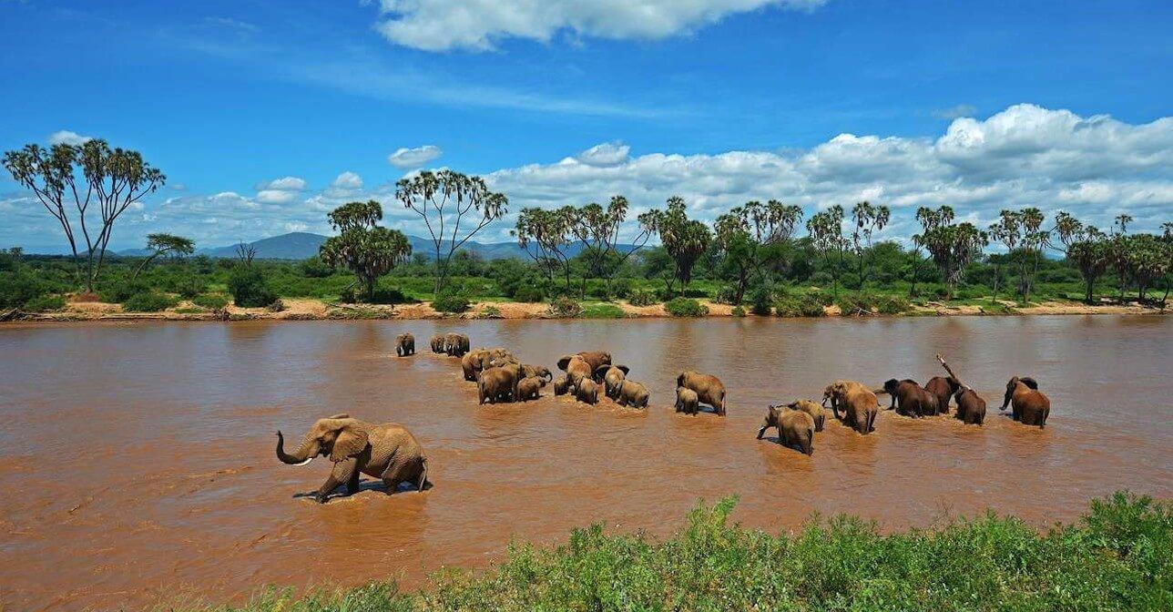 Guía de viaje para tu visita a Kenia: teléfonos y contactos de interés