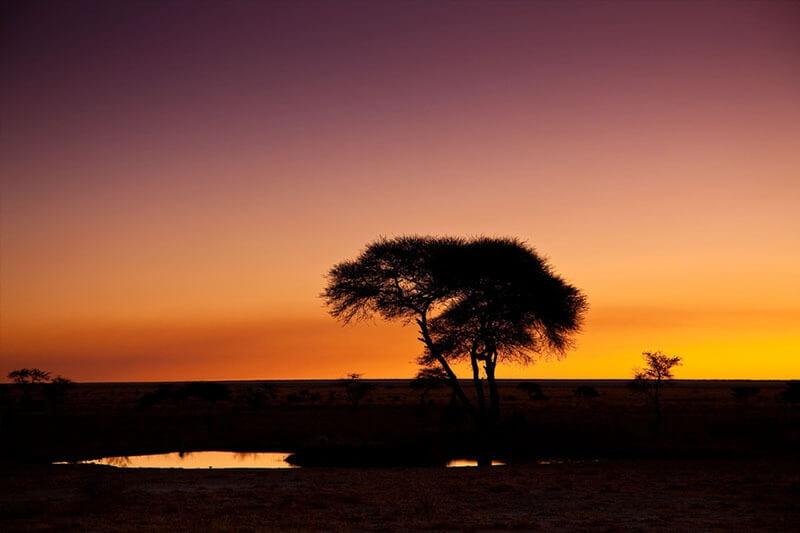 Tour regular 'Esencias de Namibia' en 12 días