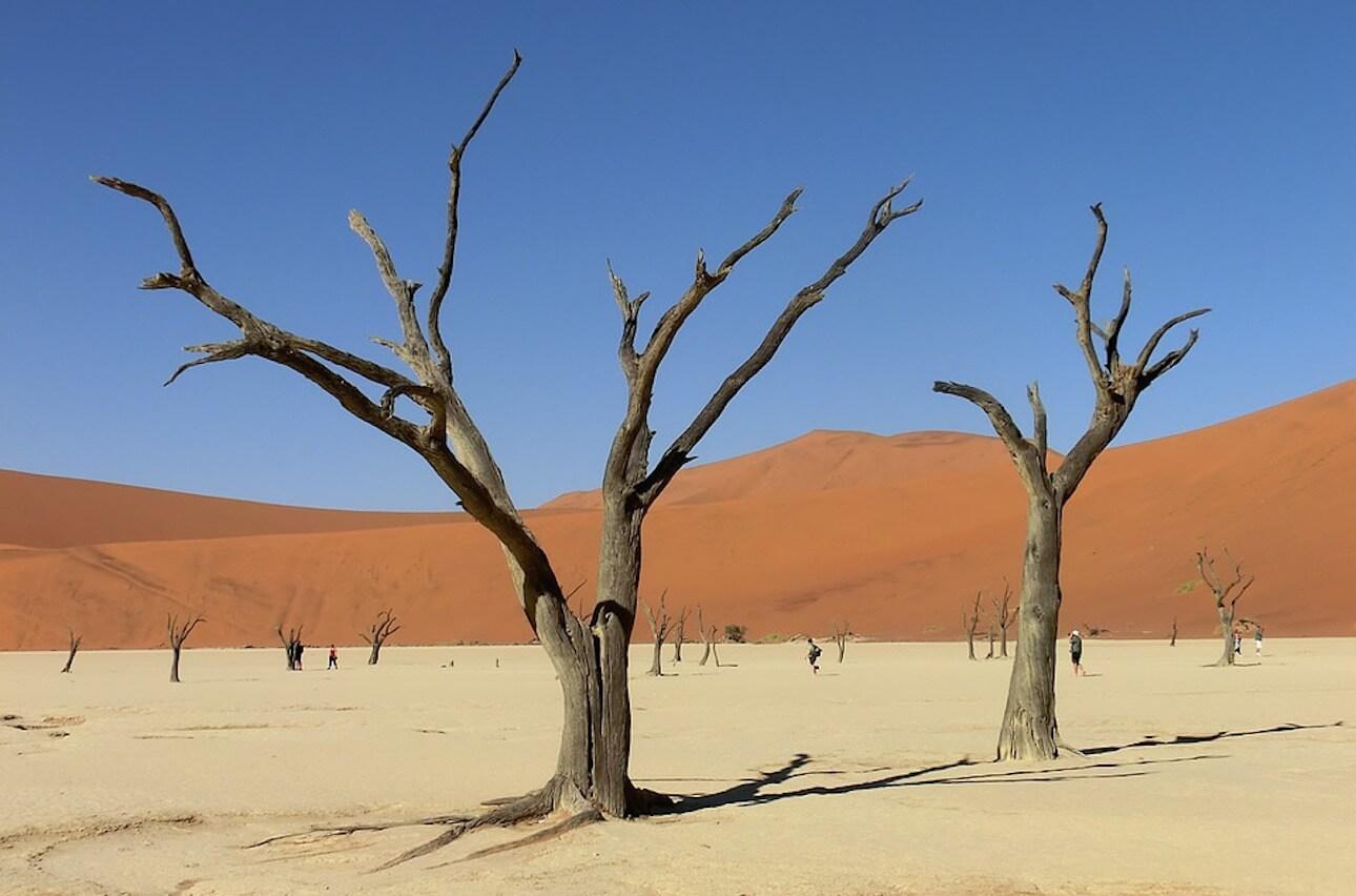 ¿Qué trámites tengo que hacer para viajar a Namibia?
