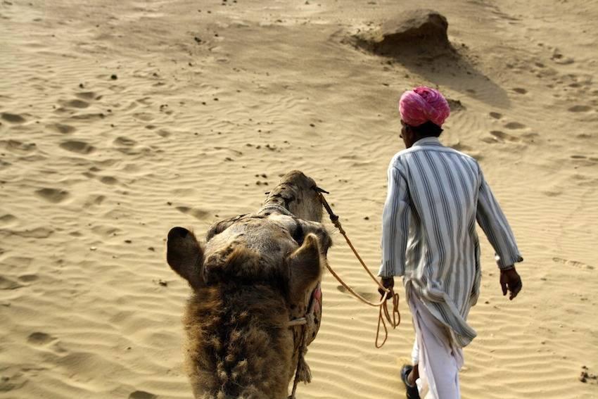 Lo mejor de Rajastán: De Jaipur al desierto