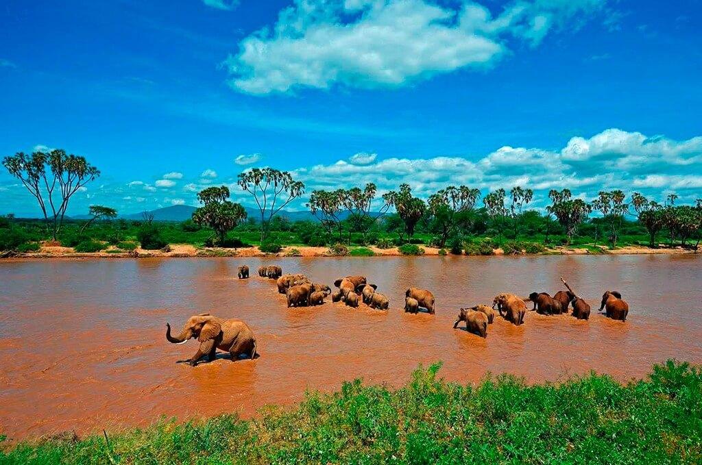 Safari 'Lo Mejor del Rift' en 7 días en Kenya