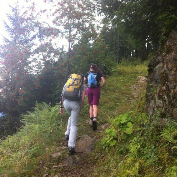 Senderismo por los Alpes de Baviera: Castillos y lagos