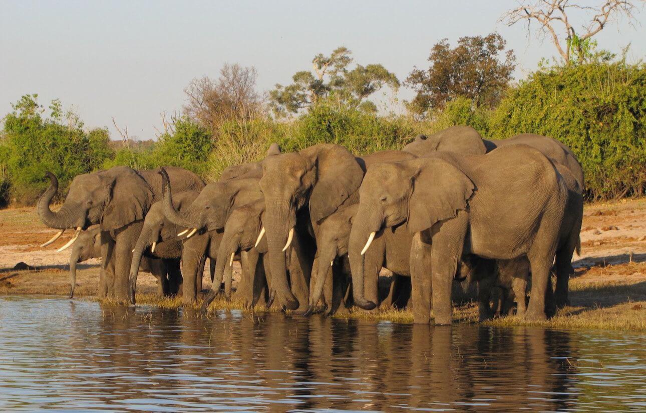 ¿Qué visado necesito para viajar a Zimbabwe?